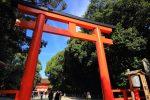 京都下鴨神社の秋