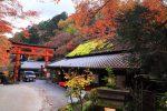 京都嵯峨野の紅葉 2017