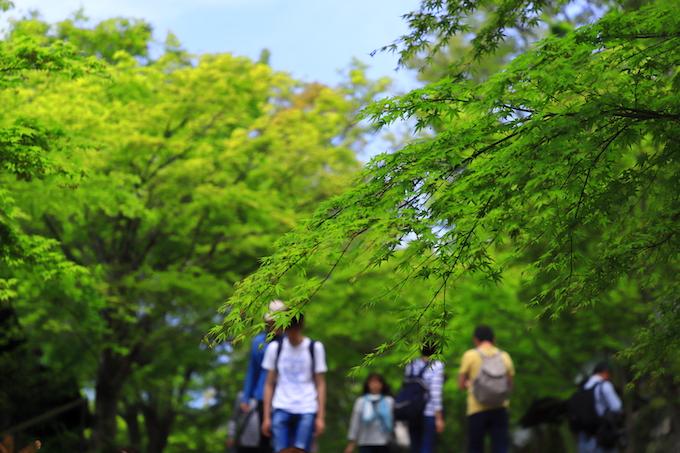 京都 大原 三千院