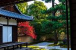 京都御所周辺を散歩してきました