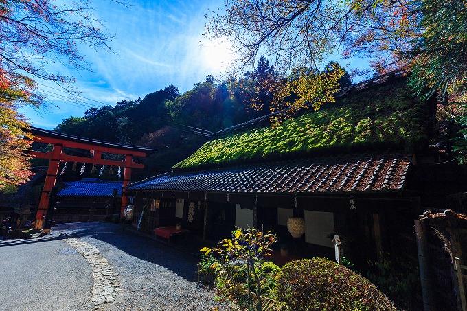 京都奥嵯峨